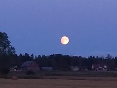 Måne 2 dagar innan full Visingsö